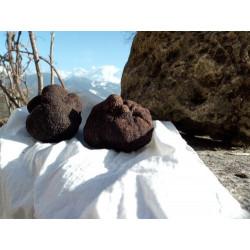 Foie gras poêler sur un lit...